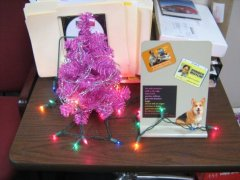 In my office last holiday season.<br />Note the Dwight Schrute magnets!