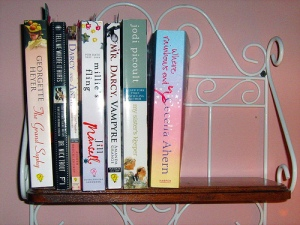 New review/borrowed book shelf