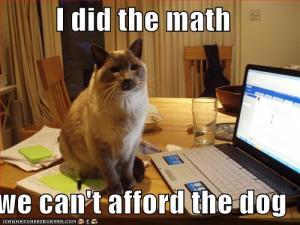 math_dog