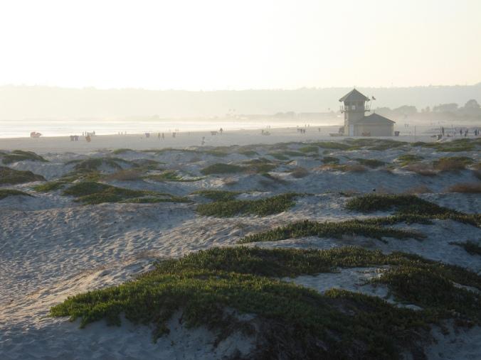 Beach in Coronado