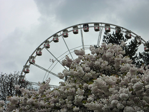 Hyde Park ferris wheel
