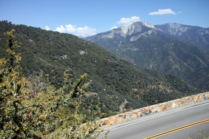 Sequoia III